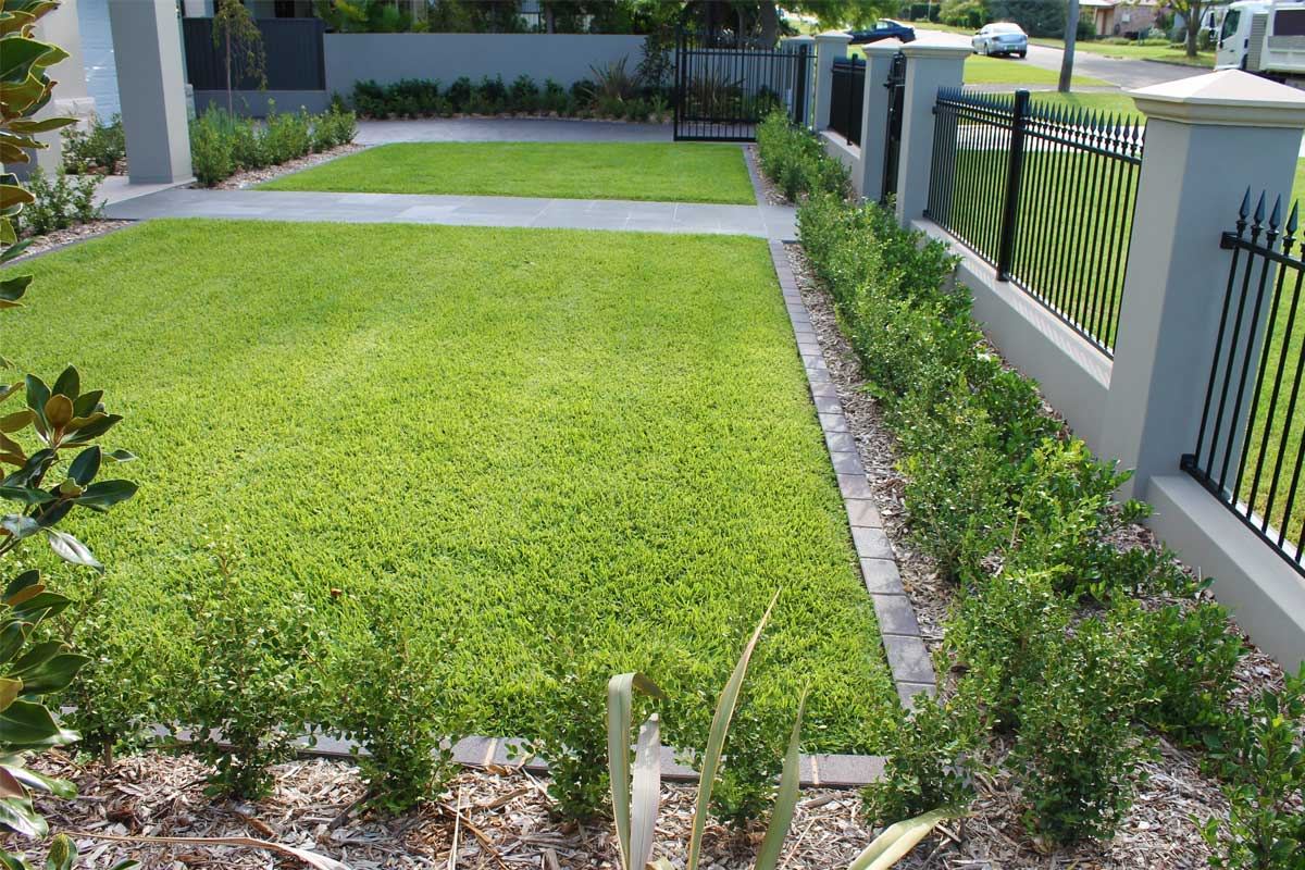 Landscaping Elements Lawns and Turfing