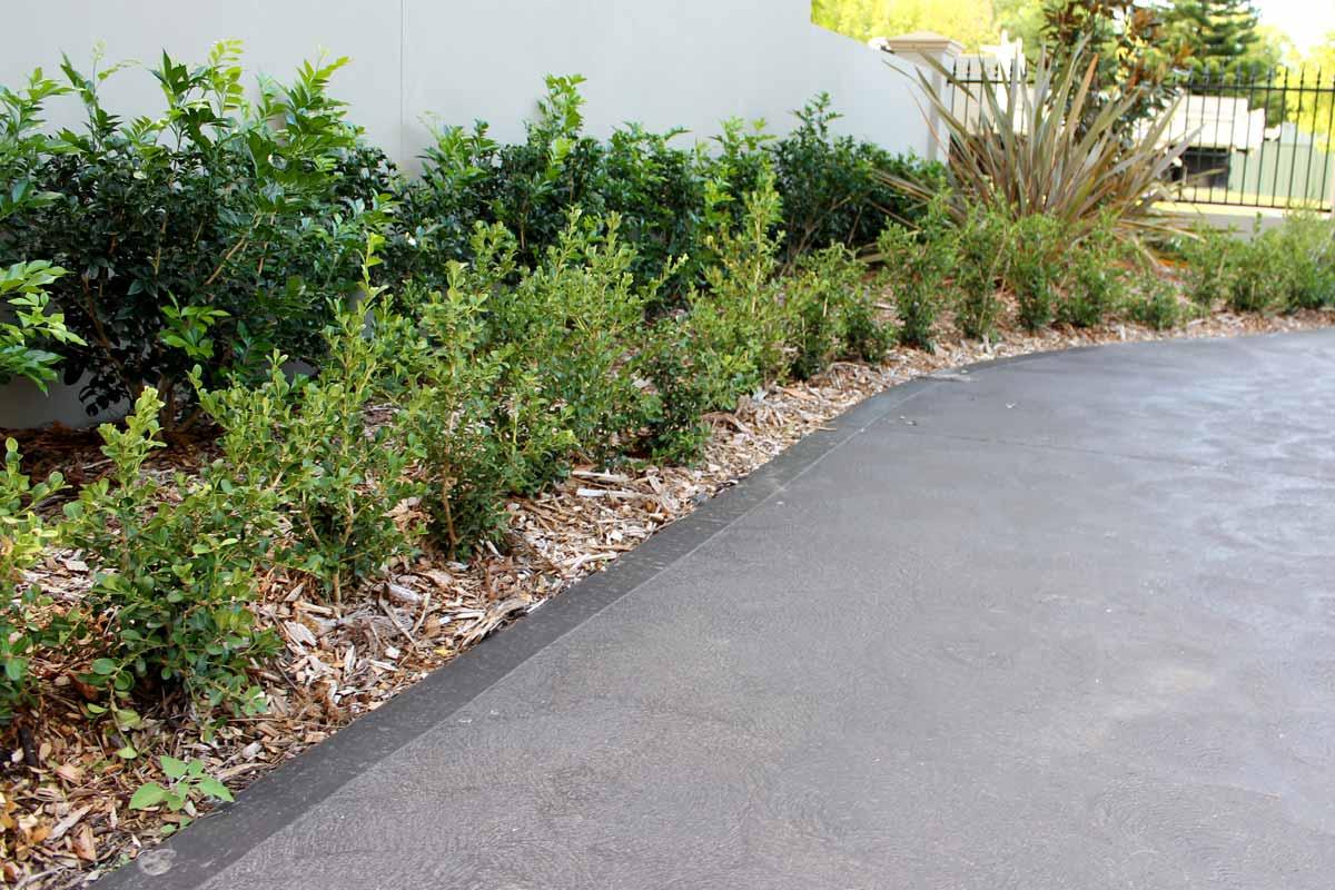 Landscaping Driveways Garden Area